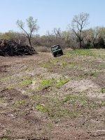 Dam Seeding.jpg